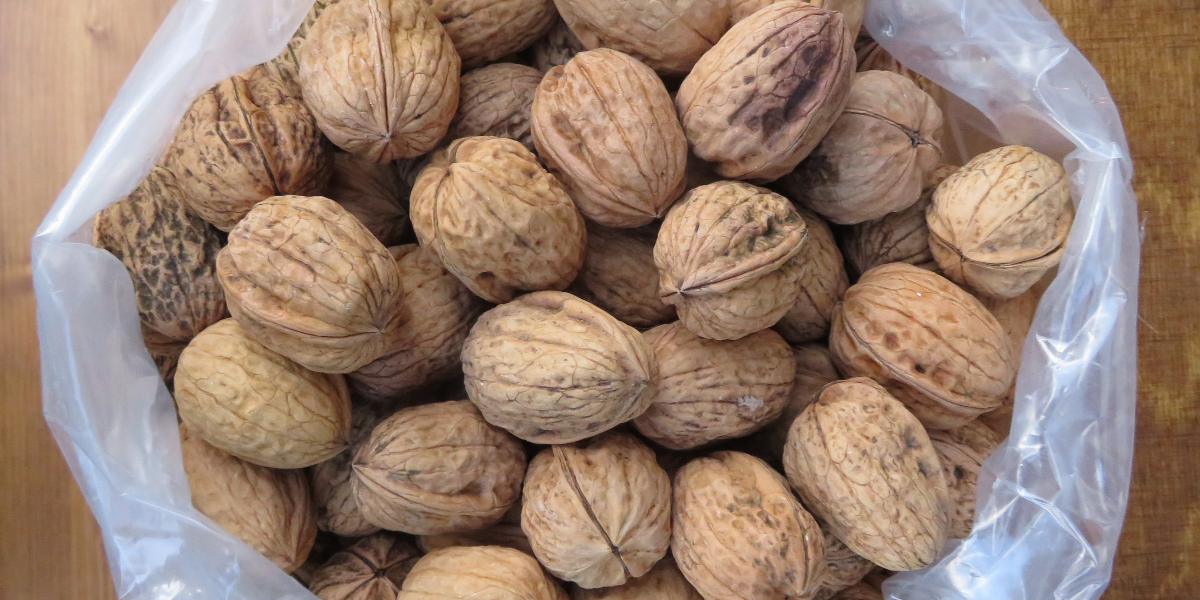 Does a healthy lifestyle include nuts or are nuts healthy?